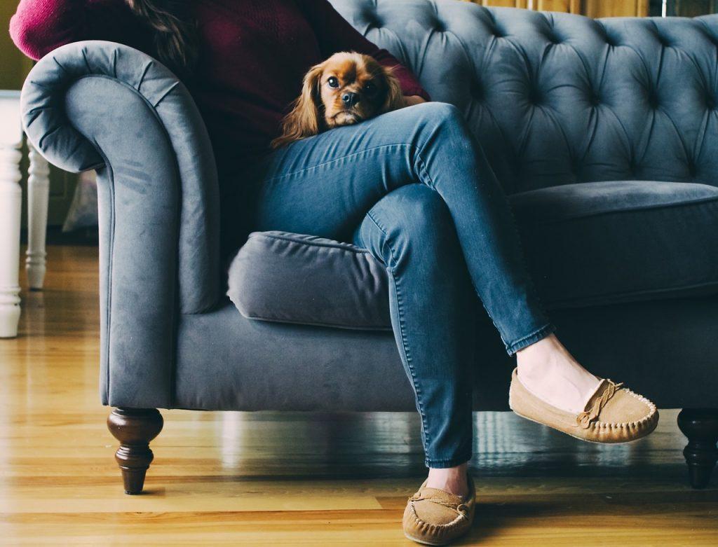 femme assise sur un canapé portant un jean et des mocassins avec un petit chien la tête posée sur ses cuisses